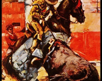 "Bullfighting - Plaza De Toros De Acapulco #21 Canvas Art Poster 12""x 24"""