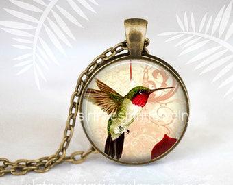 Hummingbird Jewelry, Hummingbird Necklace, Nature, Birds, Bird Earrings, Photo image Jewelry, gift for women Circle pendant necklace