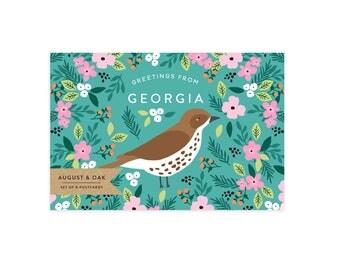 Georgia State Bird Postcard - Set of 8