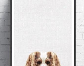 Animal Wall Art dog wall art | etsy