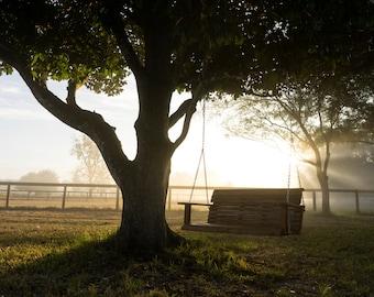 Bench Swing on Ocala Ranch