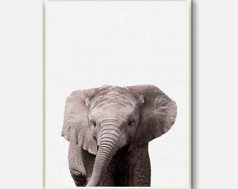 Elephant Print, Baby Animals Wall Art, Elephant Photo, Safari Print, African Animal, Modern Nursery Decor, Printable Art,Kids Room Poster