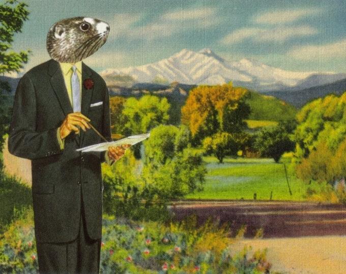Cute Wildlife Art, Funny Animal Artwork, Retro Colorado Postcard