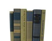 Blue Tan Taupe  Decorative Books , Photo Props , Vintage Wedding Decor