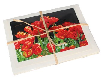 Set of 4 Spring Flower  Notecards (Blank)