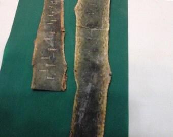 2 Baby Green Tree Boa Pieces
