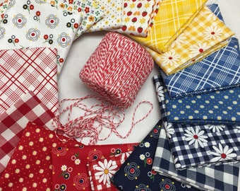 Gingham Girls bundle 16 pieces