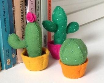 Mini cactus set - three cacti supplied