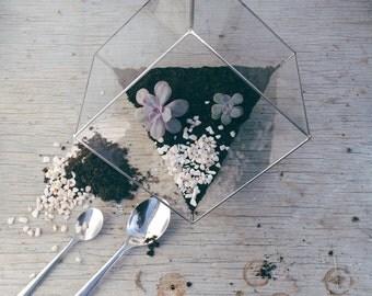Terrarium Cube tronqué géométrique verre - Fait main - Vitrail tiffany - Saint Valentin - Cuivre - Cactus - Mini jardin - Jardin intérieur