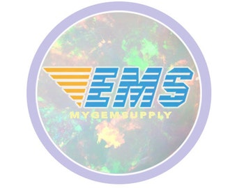 Express Mail Service(EMS)