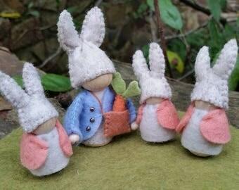 Peter Rabbit Gnome Set