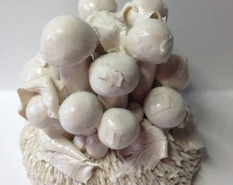 Gathering fungi