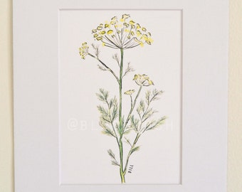 Dill Watercolor Print (Matted)
