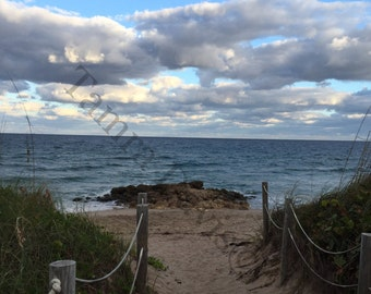 Beach Walkway 5x7 Photo w 8x10 Mat