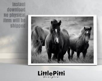 Horse art, black and white horse wall art print, modern horse print, neutral horse art, love horse photo, wall print horses, large horse art