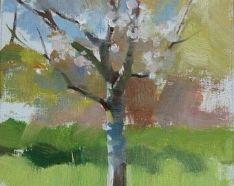 "Plein air Landscape Impressionist painting Original 8""x10"" oil on panel Oregon Orchard Cherry Tree contemporary fine art"
