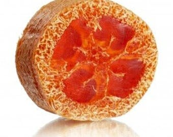Florida Orange Loofah Soap