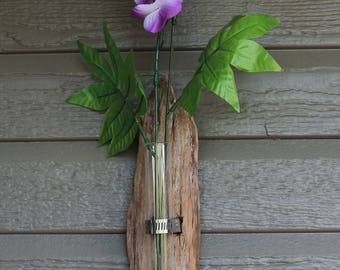 Hanging driftwood test tube vase