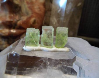 Set of 3 Green Double Terminated Peridot Crystals  from Mansehra Pakistan   Jewelry Wire Wrapping Supply   Healing Crystal #14