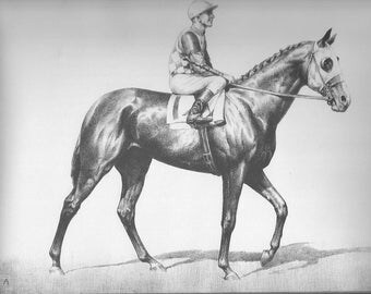 Horse Print CW Anderson Vintage Race Horse Thoroughbred Horse Racing Derby Equine Wall Art Vintage Equestrian Horse Decor 1940 Discovery