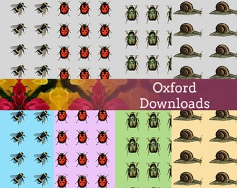 SALE Insect Scrapbook Paper, 8 x 8, Digital Download, Sheets, Collage Pages, Bees, Ladybirds, Beetles, Snails, Nature Prints, Art