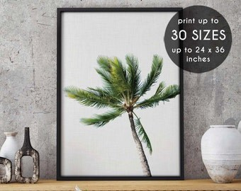 Palm leaf, Palm leaf Print, Green Decor, Palm leaf Photo, Palm leaf Printable, Beach Art, Botanical Print, Palm leaf Art, tropical print, 39