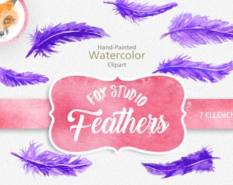 Painted Feather Clip Art, Digital Graphics