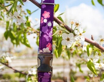Blossom Dog Collar - Cherry Blossom Collar - Martingale Dog Collar