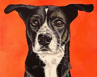 Square Custom Pet Portrait Acrylic Painting