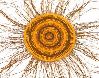 Woven Mat by Djibigula Djayhgurrnga