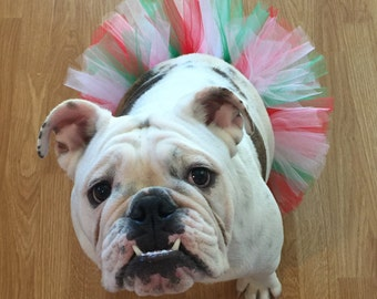 Christmas Tutu For Dogs/Christmas Tutu For Bulldogs/Tutu For Pets/Red, White, Green & Pink Tutu For Dogs/Holiday Tutu For Pets