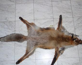 Fox Pelt,Soft Leather,Hunting Trophy,Skin,Handmade Fox Pelt,Trophy Pelt,Tan Hide,Pelt,Fox,Animal Pelt