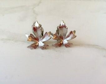 Silver tone maple leaf clip on earrings-clip back earrings