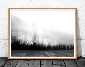 Black and White Landscape Photography, Landscape Print, Black and White Photography, Photography Prints Digital Download, Forest Print Art