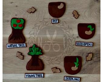 Plant Life Cycle Felt Kit