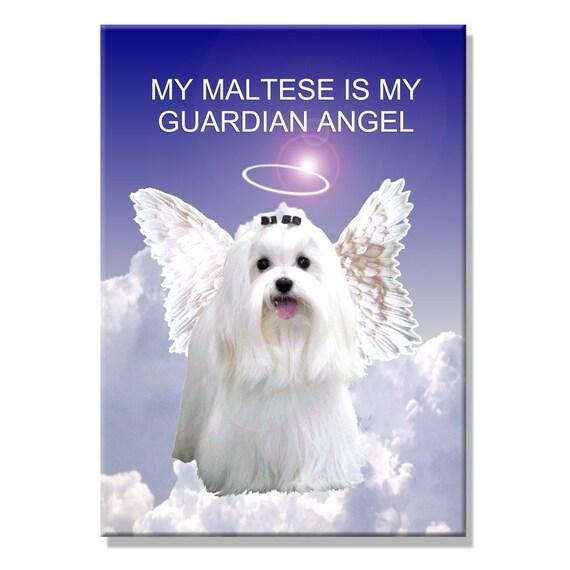 Maltese Guardian Angel Fridge Magnet