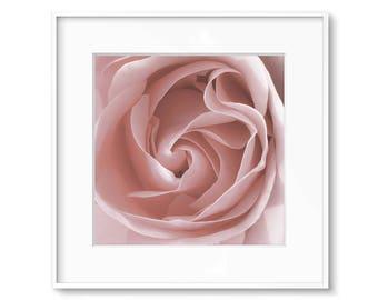 Rose Print, Rose Art, Pink Roses, Flower Print, Printable Wall Art, Downloadable, Modern, Flower Art, Blush Pink, Pale Pink, Floral Art, Art
