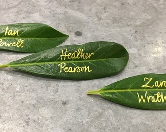 Handwritten Wedding Place Name Cards on Fresh Leaves. Cool, Calligraphy, Modern Design, Table Settings, Party.