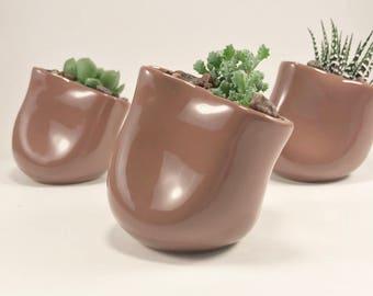 Succulent Planter - Slanted Planter