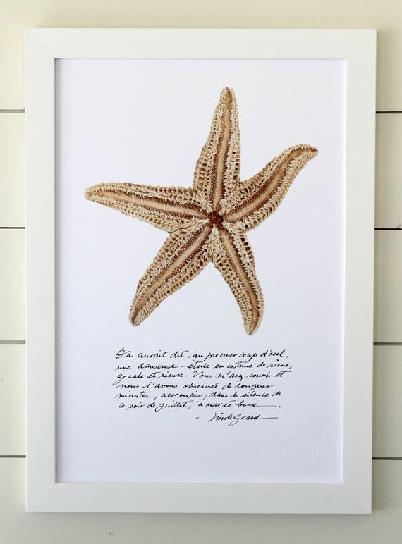 Starfish poster with calligraphied poetry