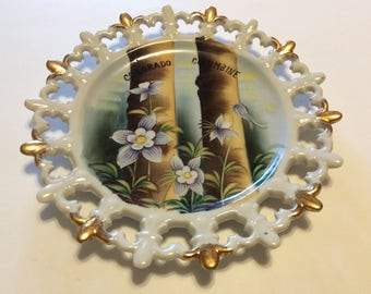 Vintage Norcrest Hand Painted Colorado Columbine wall Plate