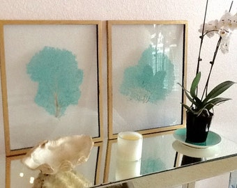 Pair Framed Sea Fans - Sea Glass Blue