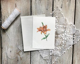 Waterolor Lily Postcard Set of 3