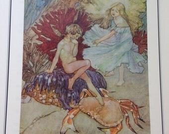 The Water-Babies Hardback Book - 1994 edition