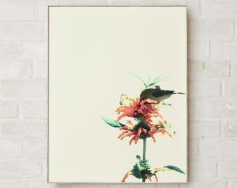 Bird Prints Wall Art Bird Wall Art Prints Bird Art Print Art Poster Bird Artwork Prints Bird Poster Bird Pictures Bird photography Prints
