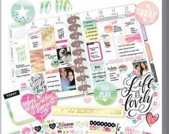 Watercolor Value Pack Stickers - MAMBI Happy Planner Stickers