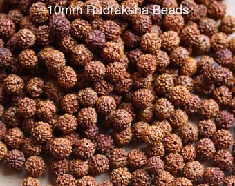 200 Rudraksha Beads/Rudraksha Loose Beads/Rudraksha 10MM Beads/Bracelet Rudraksha Beads/ 10MM/200 Beads