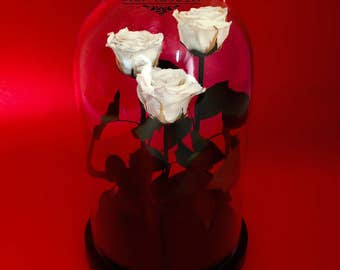 Three Belle Rose in glass,Disney,Beauty and the Beast rose,forever rose,gift for here,preserved rose,eternal rose enchanted,preserved flower
