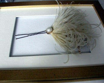 PIN feather