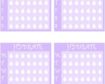 Full Box Hydrate // Erin Condren // Personal Filofax // Stickers // Planner